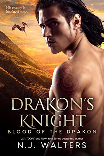Drakon's Knight by N.J. Walters cover