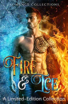 Fire & Ice by Tricia Schneider (cover)