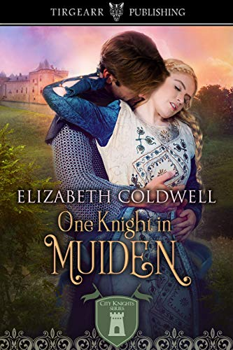 One Knight In Muiden by Elizabeth Coldwell (cover)