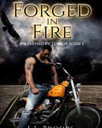 AUTHOR L.L. Brooks – Forged in Fire