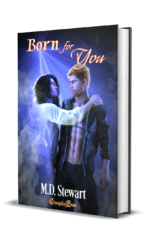 Paranormal B&B Series with Changeling Press