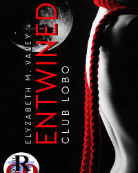 AUTHOR Elyzabeth M Valey – Entwined