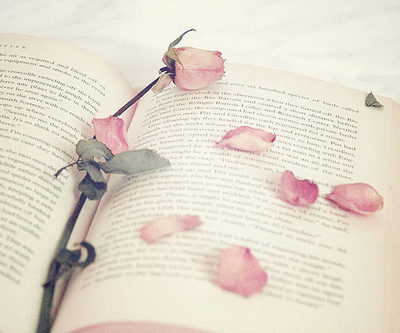 book-pink-rose-separate-with-comma-vintage-Favim.com-224515